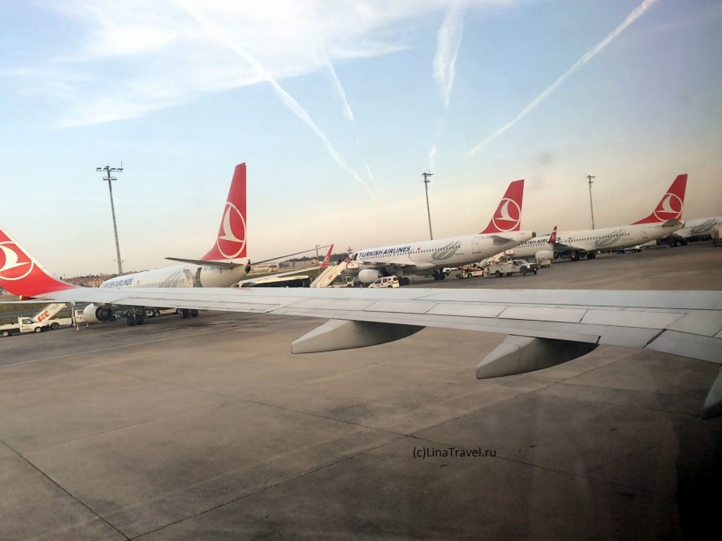 Самолеты Turkish airlines в аэропорту Ататюрк в Стамбуле
